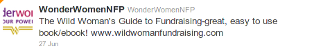Wild Woman's Guide to Fundraising