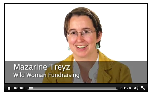 Do you need a mentor for your fundraising?