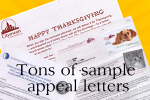 sample appeal letter, how to write appeal letter