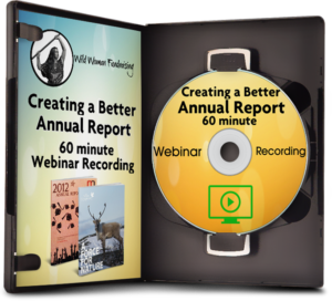 Annual Report Ecourse Example