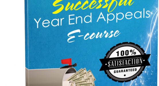 Your Ultimate Guide to Successful Year End Appeals e-course