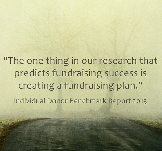 individual donor benchmark report
