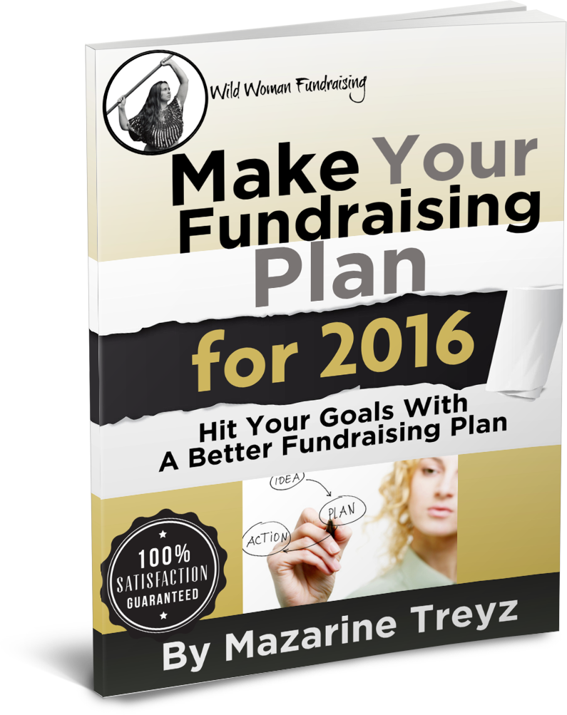 Fundraising plan sample