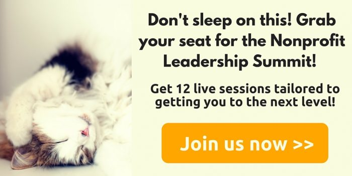 Join us for the Nonprofit Leadership Summit!