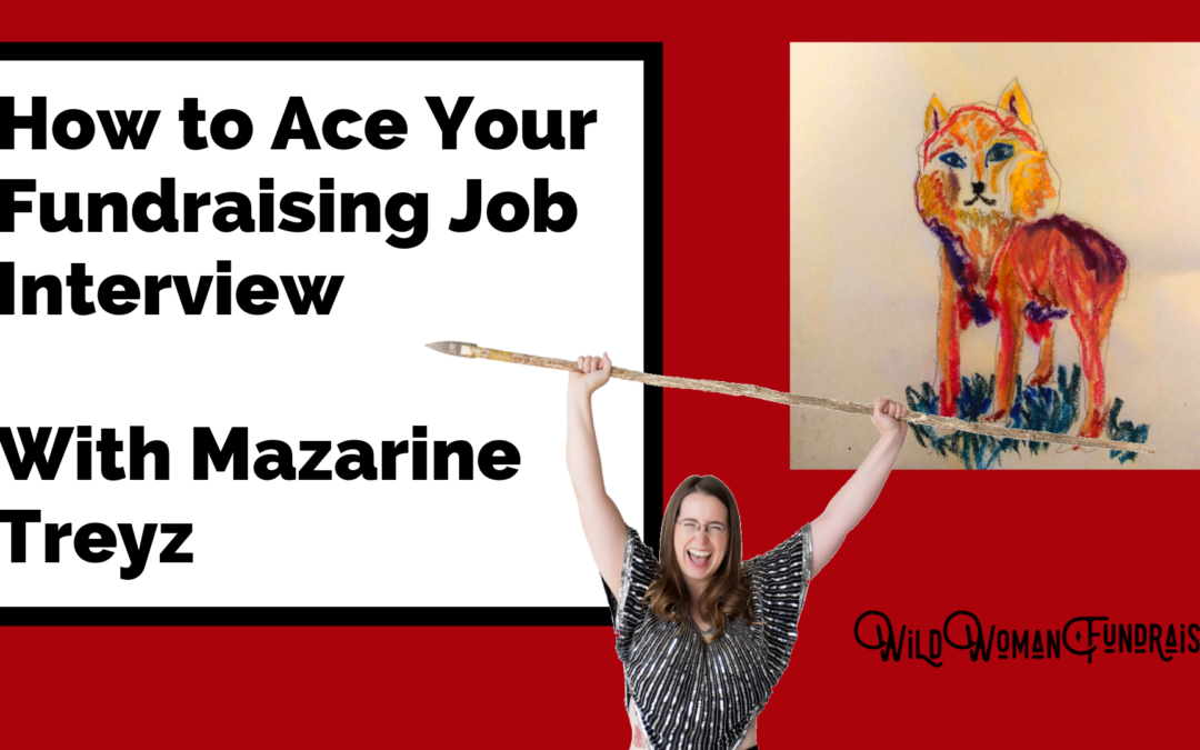 Mazarine Treyz Ace Fundraising interview