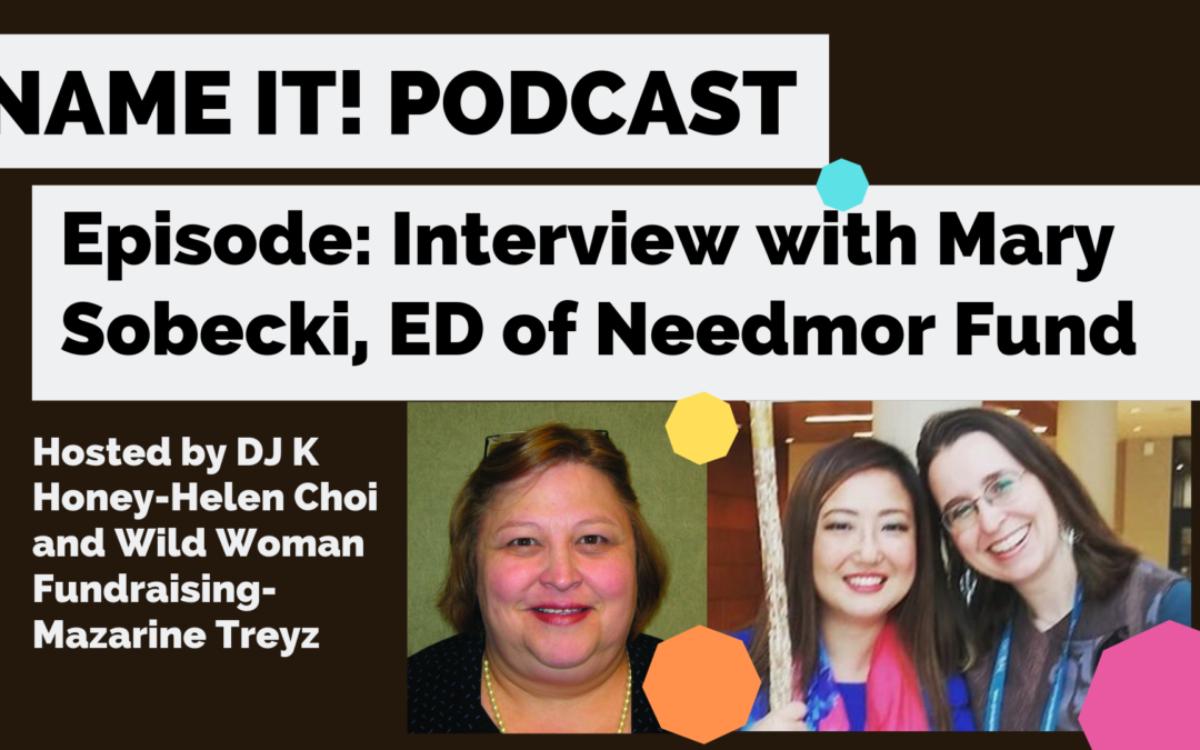 New Podcast! Social Justice Funder Interview: The NeedMor Fund